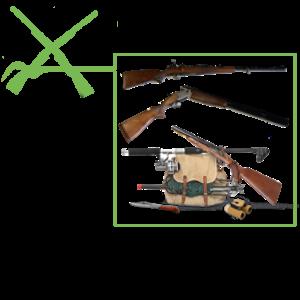 Équipement de l'arme de Chasse