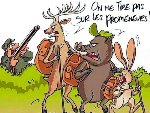 Réglementation de la pratique de la chasse